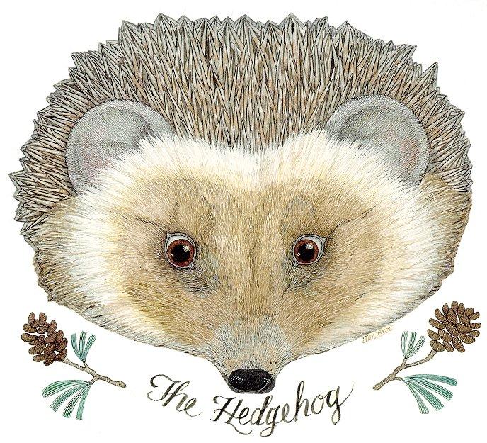 可爱的动物头饰图案-太原市育英幼儿园